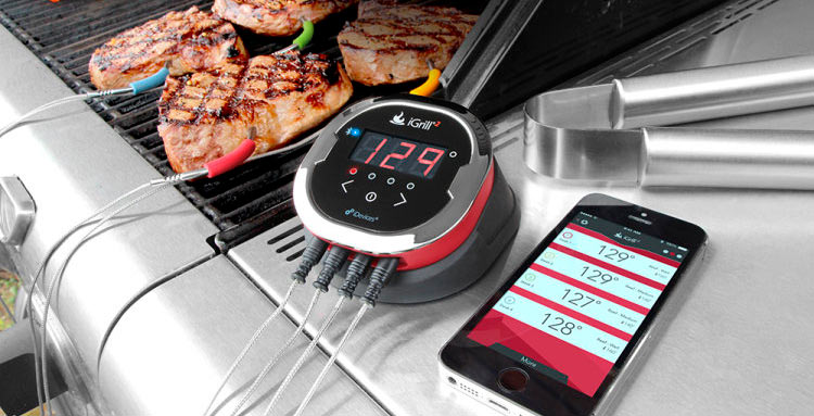 Weber iGrill Review